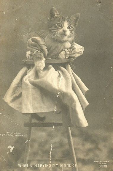 The Original Lolcat from 1905