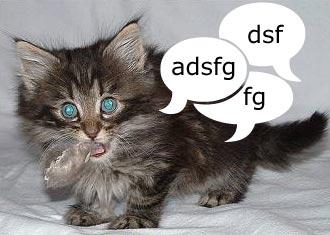 asdf kitty